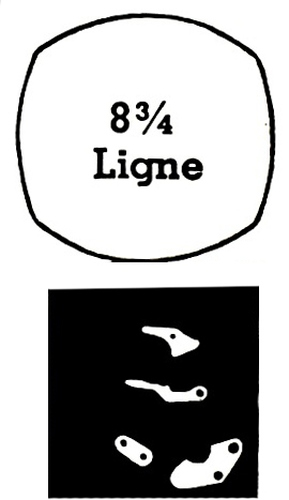 430 movement fingerprint